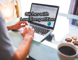 Niches-with-Low-Competition