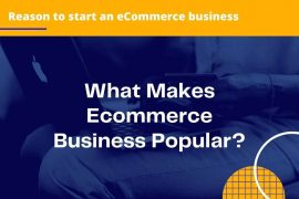 What Makes Ecommerce Business Popular?